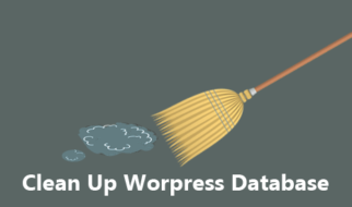 cleanup Wordpress Database
