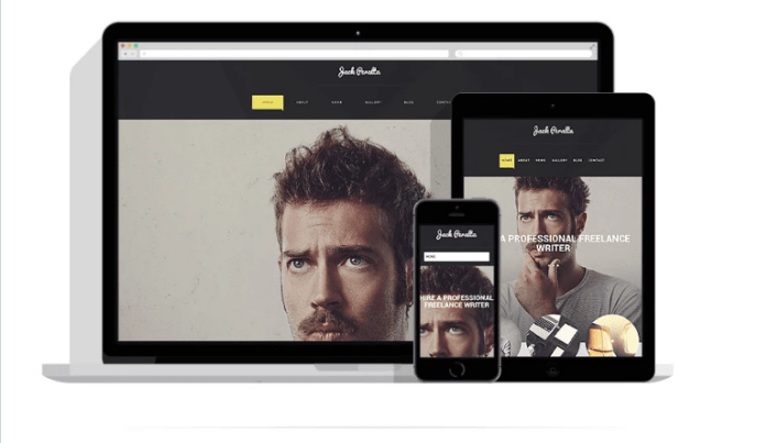 freelance writer WordPress theme